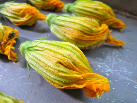 vegan stuffed zucchini blossoms
