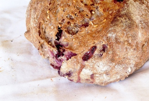 blackberry nut bread